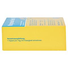 Magnesium Verla 400 Kapseln 60 Stück - Rechte Seite