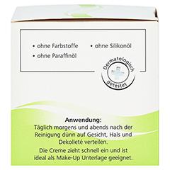 medipharma Haut in Balance Olivenöl Dermatologische Feuchtigkeitspflege 50 Milliliter - Rechte Seite