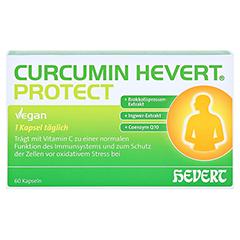 CURCUMIN HEVERT Protect Kapseln 60 Stück - Vorderseite