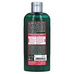LOGONA Age Energy Shampoo Bio-Coffein 250 Milliliter - Rückseite