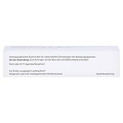 RHUS TOXICODENDRON SALBE 30 Gramm N1 - Unterseite