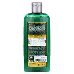 LOGONA Glanz Shampoo Bio-Arganöl 250 Milliliter - Rückseite