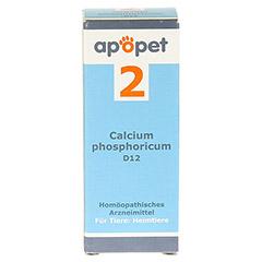 APOPET Schüßler-Salz Nr.2 Calcium phos.D 12 vet. 12 Gramm - Vorderseite