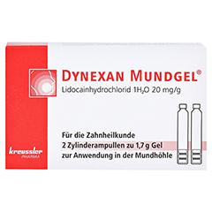 DYNEXAN Mundgel Zylinderampullen 2x1.7 Gramm - Vorderseite