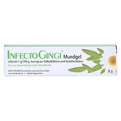 INFECTOGINGI Mundgel 6 Gramm N1 - Vorderseite