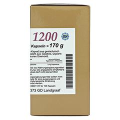 LECITHIN 1200 Kapseln 100 Stück - Rechte Seite