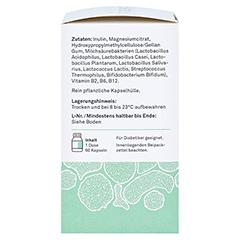 BAKTOKULT Immun Kur Kapseln 60 Stück - Rechte Seite