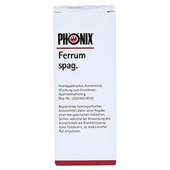 PHÖNIX FERRUM spag.Mischung 100 Milliliter N2 - Vorderseite