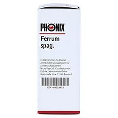 PHÖNIX FERRUM spag.Mischung 100 Milliliter N2 - Linke Seite