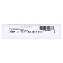 SYMPHYTUM ETHANOL.Decotum D 3 Salbe 25 Gramm N1 - Unterseite