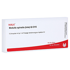 MEDULLA SPINALIS tota GL D 15 Ampullen 10x1 Milliliter N1