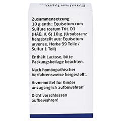 EQUISETUM CUM Sulfure tostum D 1 Trituration 20 Gramm N1 - Rückseite