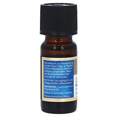 MANUKA HEALTH Manuka Öl ätherisch 10 Milliliter - Rechte Seite