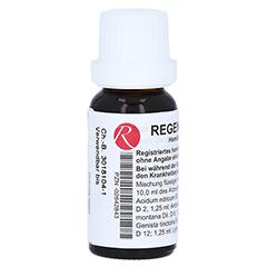 REGENAPLEX Nr.51 a Tropfen 15 Milliliter N1 - Rückseite