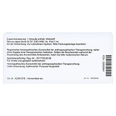 NERVUS VAGUS GL D 30 Ampullen 10x1 Milliliter N1 - Rückseite