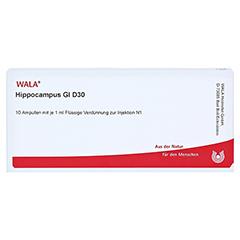 HIPPOCAMPUS GL D 30 Ampullen 10x1 Milliliter N1 - Vorderseite