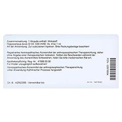 HIPPOCAMPUS GL D 30 Ampullen 10x1 Milliliter N1 - Rückseite