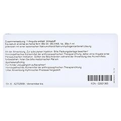 EQUISETUM EX Herba D 6 Ampullen 10x1 Milliliter N1 - Rückseite