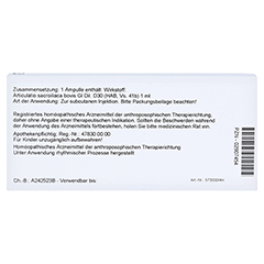 ARTICULATIO sacroiliaca GL D 30 Ampullen 10x1 Milliliter N1 - Rückseite