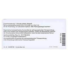 NERVUS STATOACUSTICUS GL D 12 Ampullen 10x1 Milliliter N1 - Rückseite