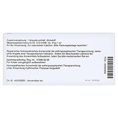 MESENCEPHALON GL D 12 Ampullen 10x1 Milliliter N1 - Rückseite