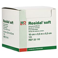 ROSIDAL Soft Binde 10x0,3 cmx2,5 m 1 Stück