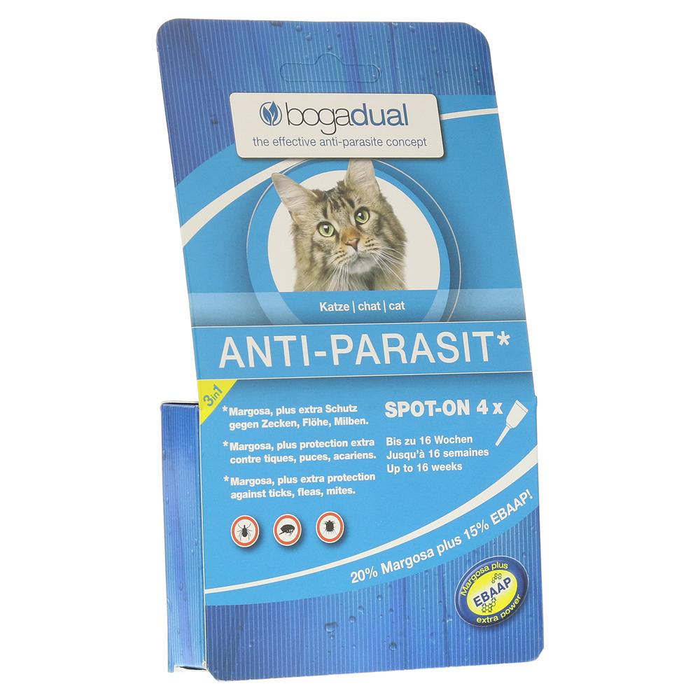 bogadual anti parasit spot on katze milliliter online bestellen medpex versandapotheke. Black Bedroom Furniture Sets. Home Design Ideas
