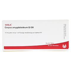 CORPUS AMYGDALOIDEUM GL D 8 Ampullen 10x1 Milliliter N1 - Vorderseite
