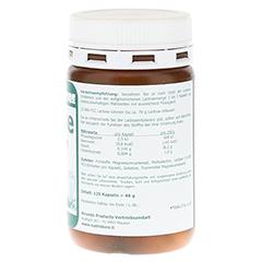 LACTASE 14.000 FCC Enzym Kapseln 120 Stück - Linke Seite