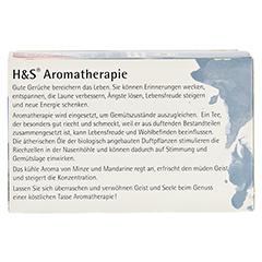 H&S Bio Minze-Mandarine Aromatherapie Filterbeutel 20 Stück - Rückseite