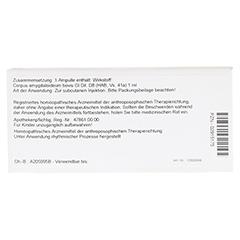CORPUS AMYGDALOIDEUM GL D 8 Ampullen 10x1 Milliliter N1 - Rückseite