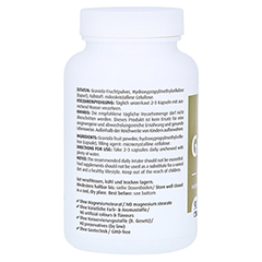 GRAVIOLA KAPSELN 500 mg/Kap.reines Blattpulv.Peru 90 Stück - Linke Seite