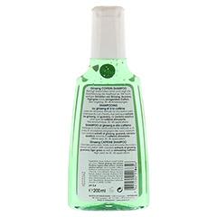 RAUSCH Ginseng Coffein Shampoo 200 Milliliter - Rückseite