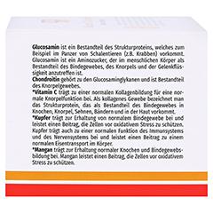 GLUCOSAMIN 750 Chondroitin Plus Megamax Kapseln 120 Stück - Linke Seite
