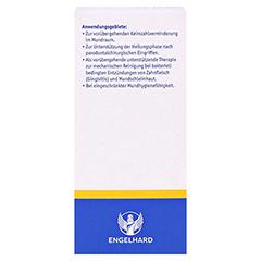 Chlorhexidindigluconat Fertiglösung 0,2% 200 Milliliter - Rückseite