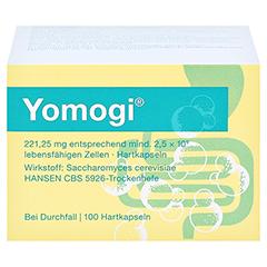 Yomogi 100 Stück - Vorderseite