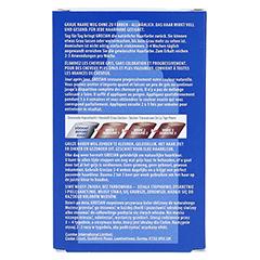 GRECIAN 2000 Pflegelotion gegen graues Haar 125 Milliliter - Rückseite