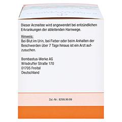 Bombastus Bärentraubenblätter 20x3 Gramm - Rechte Seite