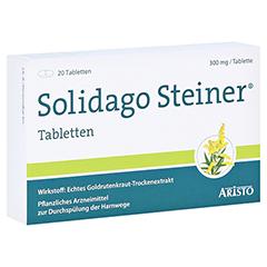 Solidago Steiner 20 Stück