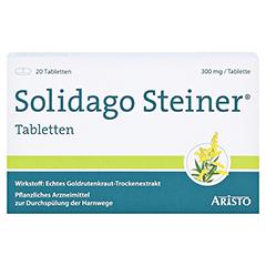 Solidago Steiner 20 Stück - Vorderseite