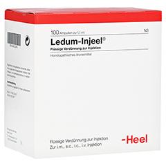 LEDUM INJEEL Ampullen 100 Stück N3