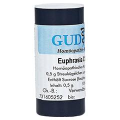 EUPHRASIA C 1000 Einzeldosis Globuli 0.5 Gramm N1