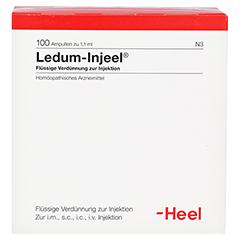LEDUM INJEEL Ampullen 100 Stück N3 - Vorderseite