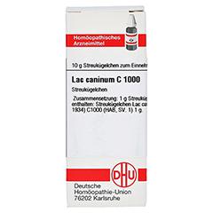 LAC CANINUM C 1000 Globuli 10 Gramm N1 - Vorderseite