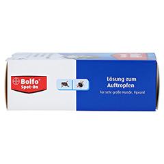BOLFO Spot-On Fipronil 402 mg Lsg.f.sehr gro.Hunde 3 Stück - Rechte Seite