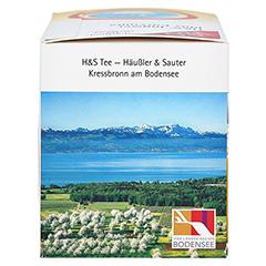 H&S Ingwer plus Curcuma Filterbeutel 20x1.25 Gramm - Rechte Seite