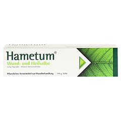 Hametum Wund- und Heilsalbe 100 Gramm N3 - Vorderseite