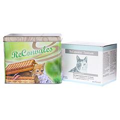 RECONVALES Tonicum für Katzen 6x45 Milliliter