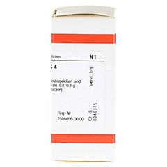 RHUS TOXICODENDRON C 4 Globuli 10 Gramm N1 - Rechte Seite