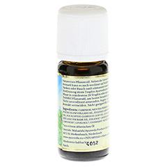 AYURVEDISCHES Kräuteröl mit Minze 10 Milliliter - Rechte Seite